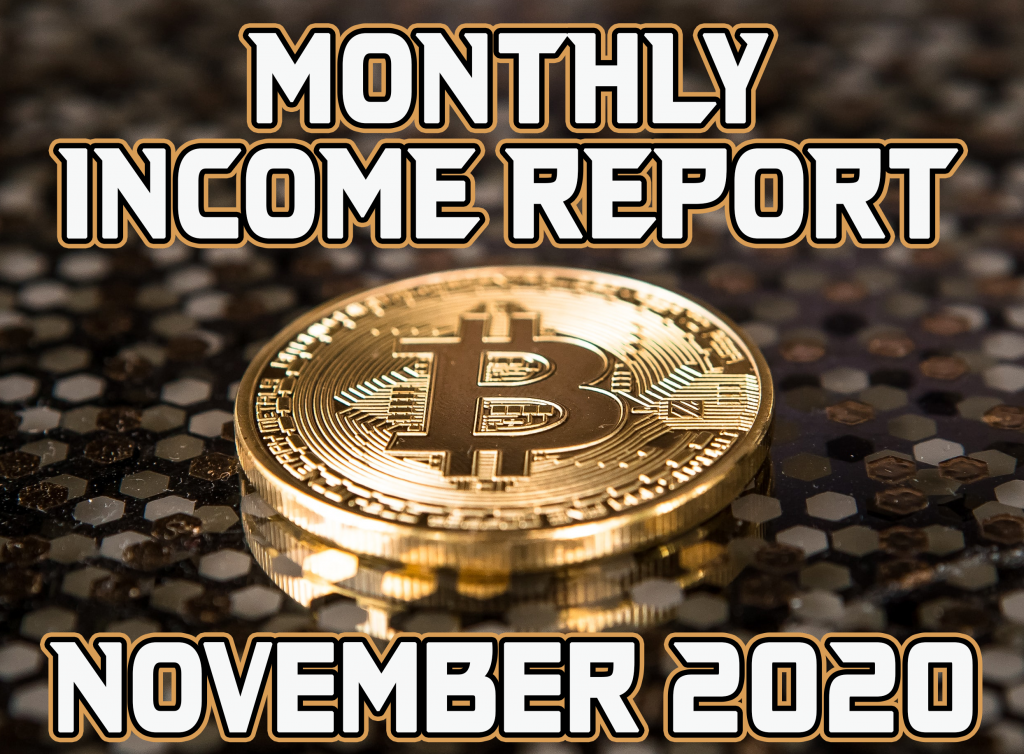 Monthly Income Report for November