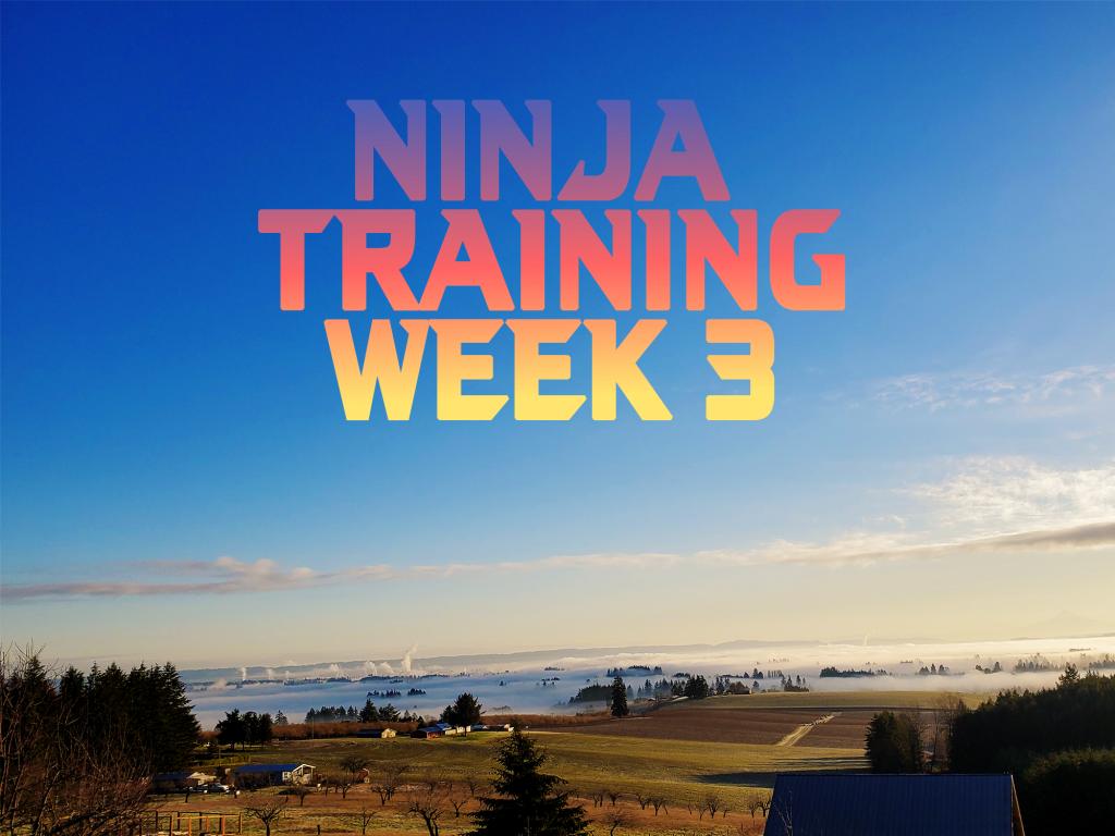 Training for Ninja Warrior – Week 3